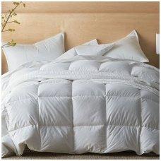 Žieminė pūkinė (100% žąsų pūkai) antklodė SELENE, 220x240cm