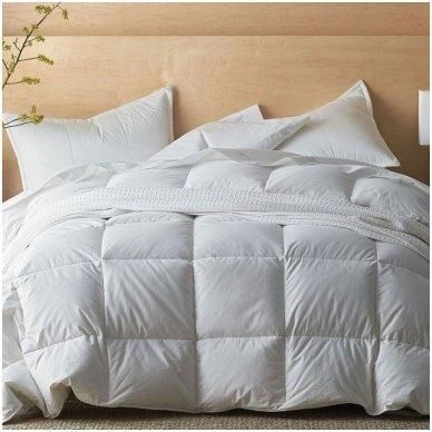 Žieminė pūkinė (100% žąsų pūkai) antklodė SELENE, 200x220cm