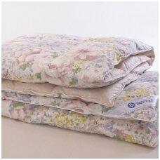 4 antklodžių dydžiai, dėl kurių tikrai neapsiriksi