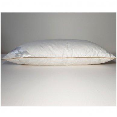 Ančių plunksnų ir pūkų pagalvė (15%-pūkų, 85%-plunksnų), 50x70 cm 2