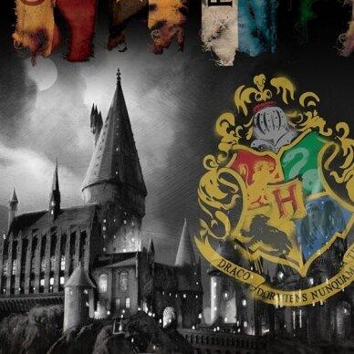 "Dvipusis patalynės komplektas ""Harry Potter"", 140x200 cm 2"