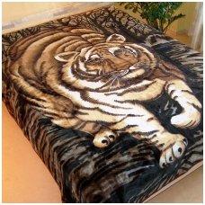 """Pledas """"Tigras"""", 160x210 cm"""