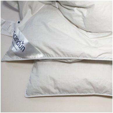Universali pūkinė (90% pūkai-10% plunksnos) antklodė MORPHEUS, 140x200cm 4