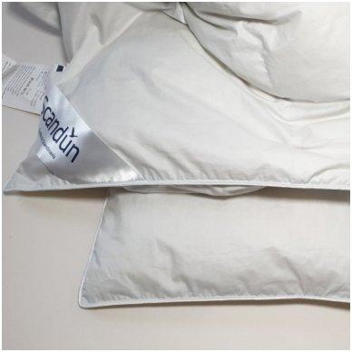 Universali pūkinė (90% pūkai-10% plunksnos) antklodė MORPHEUS, 200x220cm 4