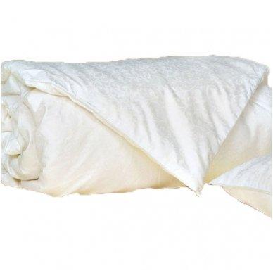 Vaikiškas natūralaus Mulberry šilko rinkinys (antklodė + pagalvė), 100x140 cm 3
