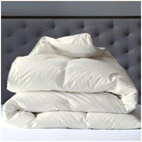 zasu-puku-70-puku-30-plunksnu-antklode-exclusive-140x200-cm-4-1-2-1
