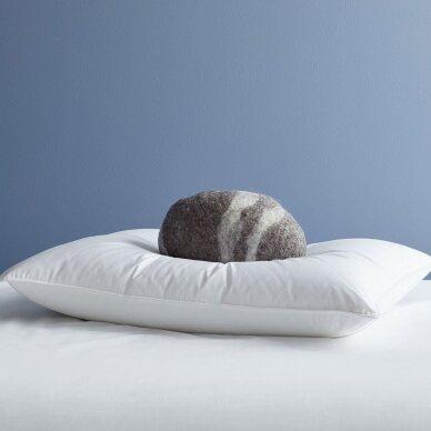 Žąsų pūkų ir plunksnų pagalvė (90%-pūkų, 10%-plunksnų) EXCLUSIVE, 40x60 cm 2