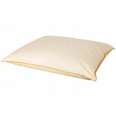 Žąsų pūkų ir plunksnų pagalvė su tiku (70%-pūkų, 30%-plunksnų) LUX ULTRA , 70x70 cm 2
